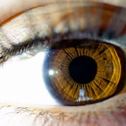 Augenrolle statt Fingerwisch: uMoove plant die Eye-Tracking-Revolution für iOS und Android
