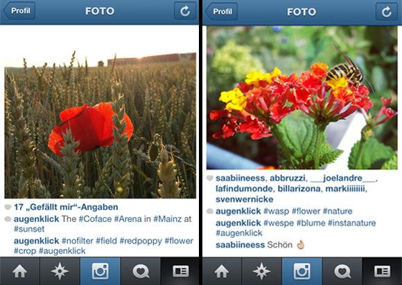Instagram Fotos mit Likes und Hashtags
