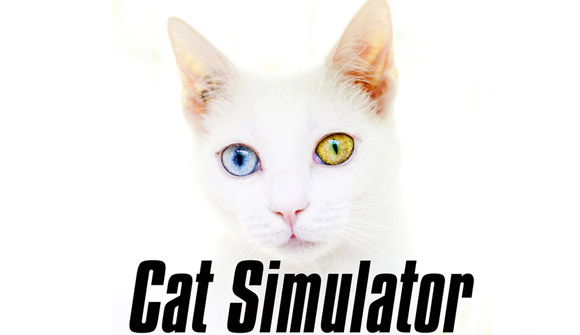cat_simulator