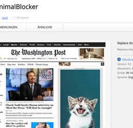 """CatContent statt nerviger Banner: """"Baby Animal Blocker"""" soll Werbung durch süße Katzenbilder ersetzen – funktioniert das?"""