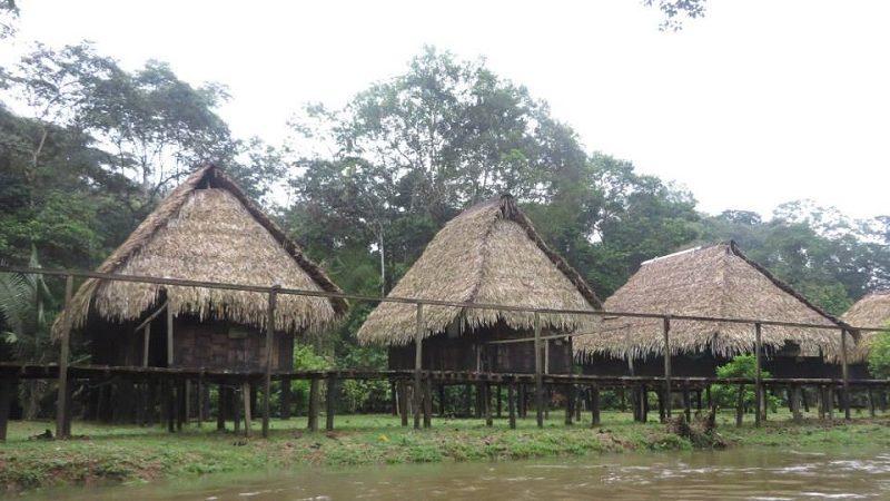 Im Einklang mit der Natur: Ecuadorianischer Regenwald bei Cuyabeno