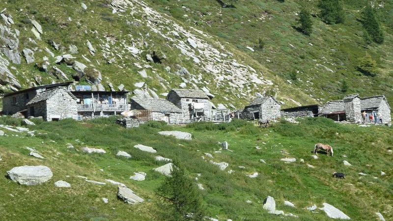 Zu den letzten Bergbauernhöfen im Tessin wandern - Alpe Nimi