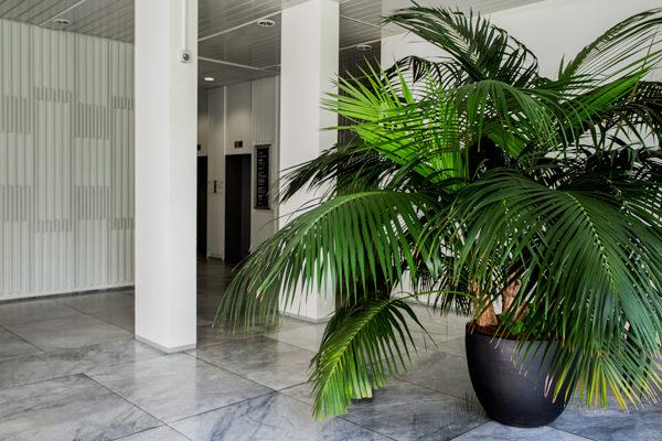 Artaxo, Agentur, Hamburg, SEO, Content Marketing