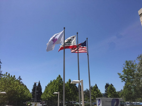 Apple, Apple Campus, Apple Park, Cupertino, Apple-Rundgang