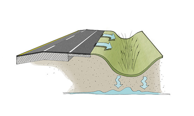Bio-Drainage The Ray Highway