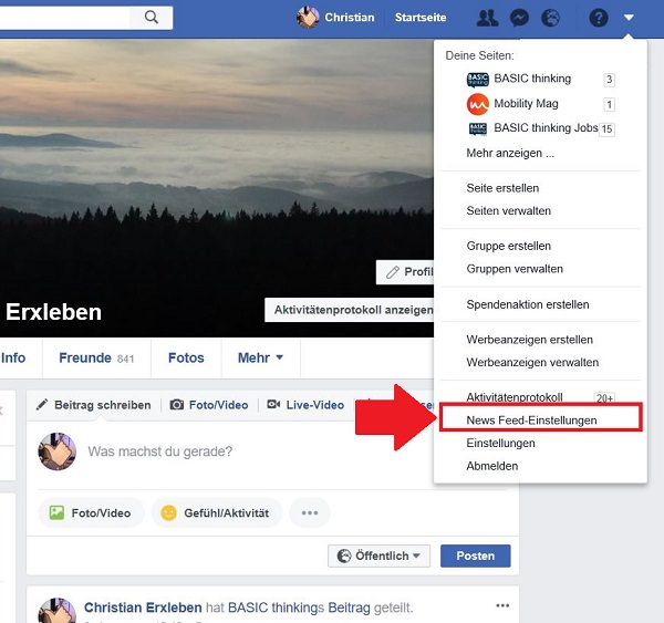 Facebook, Facebook-Newsfeed