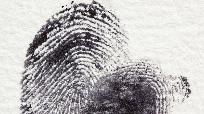 Fingerabdruck, Fingerprint, Touch ID