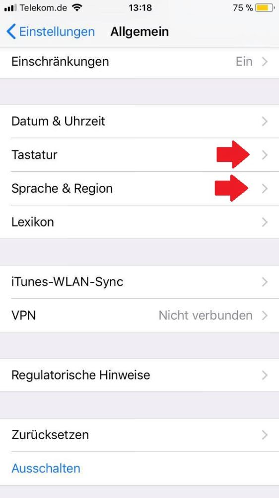 WhatsApp, WhatsApp-Sprache