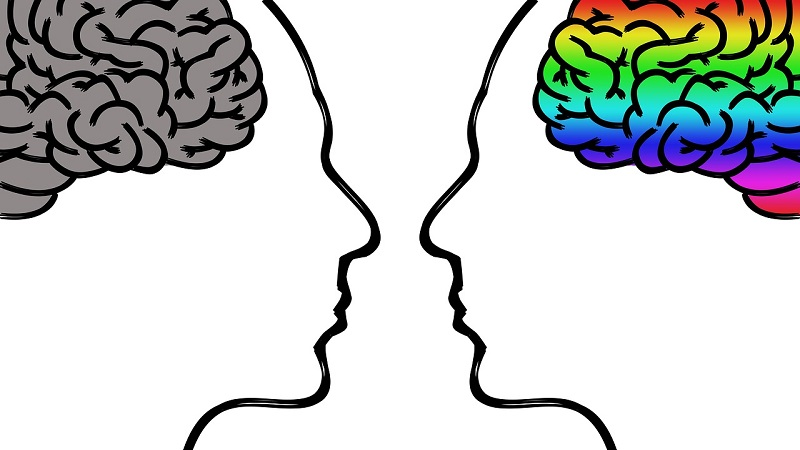 Menschen Gehirn Grafik