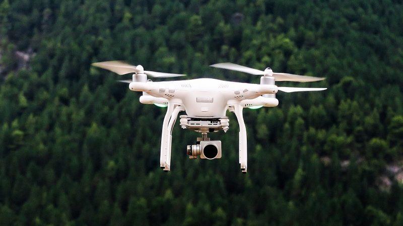 Drohne Wald
