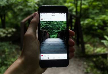 Instagram, Wald, Foto, Dschungel, Smartphone, Kennzeichnung von Werbung