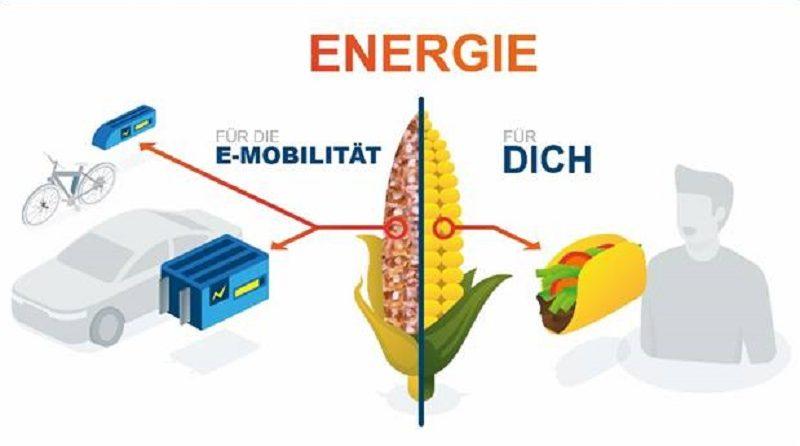Bioabfälle zu Strom umwandeln Grafik