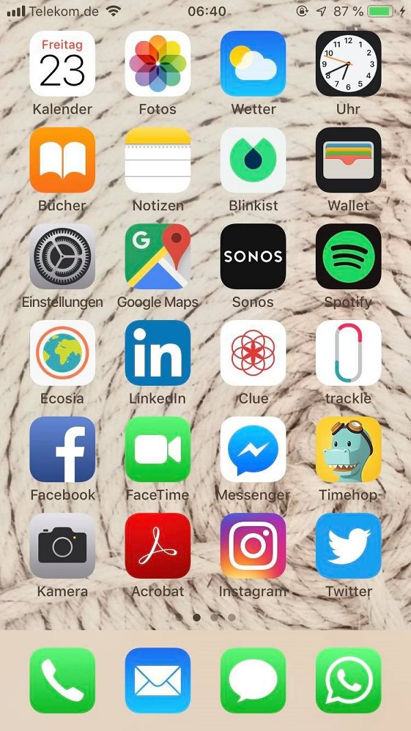 Anna-Lena Müller, Volkswagen AG, VW, Apps, iPhone, Homescreen