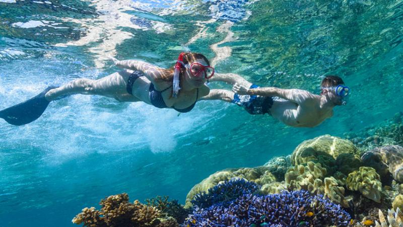Mann und Frau mit Schnorcheln unter Wasser mit Korallenriff