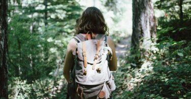 Wandern, Wald