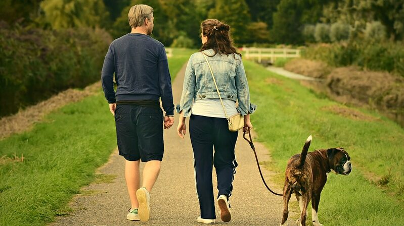 Spaziergang, Hund, Gassi, Natur, Pärchen