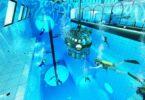 Deepspot, Hotel, Hotels, Pool, Tauchen, Schwimmen, Unterwasser