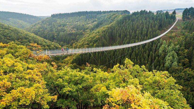 Geierlay, Herbst, Wandern, Hunsrück, Brücke