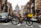 Fahrrad, Bambusrad, Cycad