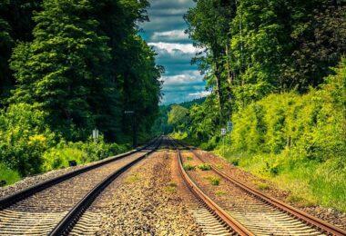 Gleis, Gleise, Schienen, Zugtrasse, Wald, Live EO