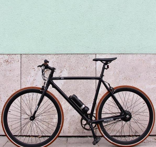 Sushi Bikes, E-Bikes, Pedelec
