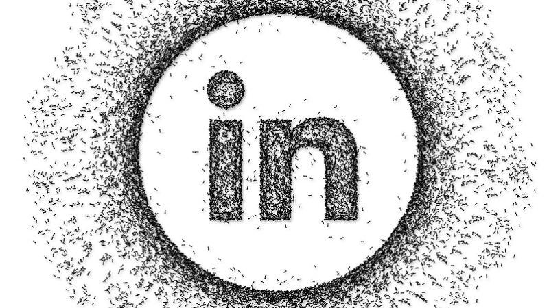 LinkedIn, Linkedin, LinkedIn-Logo, LinkedIn-Spam