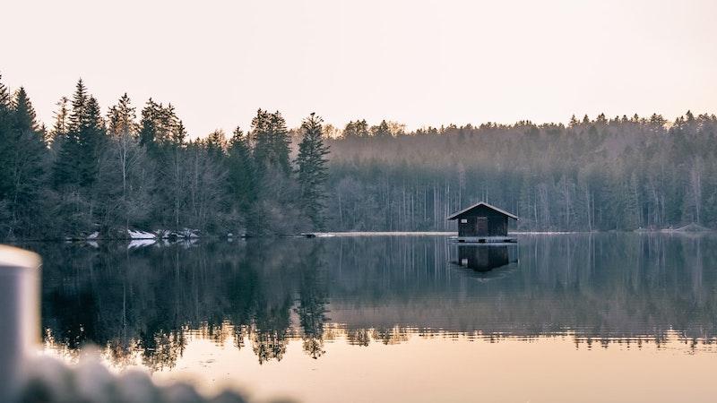 Naturhäuschen.de, Ferienhäuser, Urlaub, Natur, Umwelt, Grün, Bäume