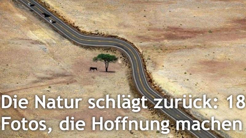 Clickbait, Clickbaiting, Heftig.de