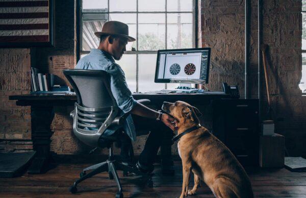 Hund, Büro, hundefreundlich