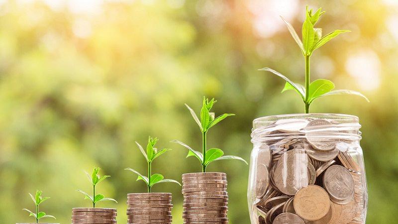 Wachstum, Münzen, Umsatzwachstum, Geld, Anlage, Investment