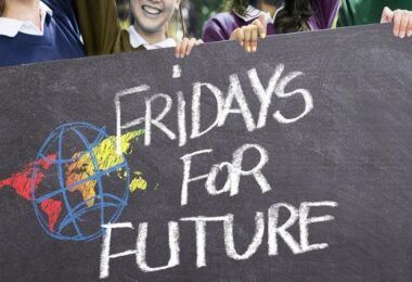 Fridays for Future, Twitter, Politik, Satire