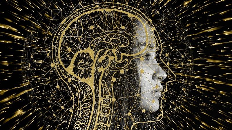KI, Künstliche Intelligenz, Artificial Intelligence, AI, KI vergessen, KI Vergessen