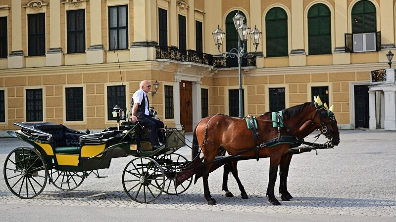 Fiaker, Wien, Pferdekutsche
