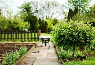 Garten, Kleingarten, Schrebergarten, Schubkarre