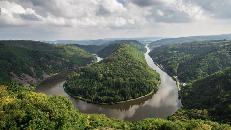 Wald, See, Seeschleife