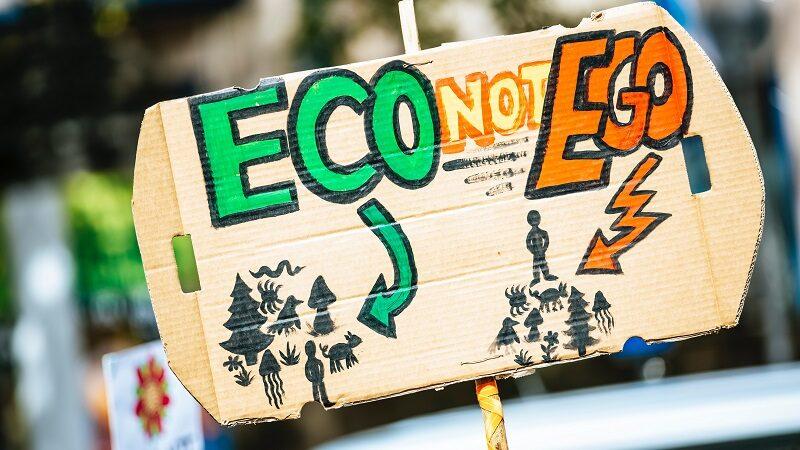Klima, Klimaschutz, Plakat, Fridays for Future