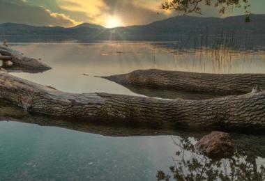 Laacher See, Rheinland-Pfalz, Wasser, Natur