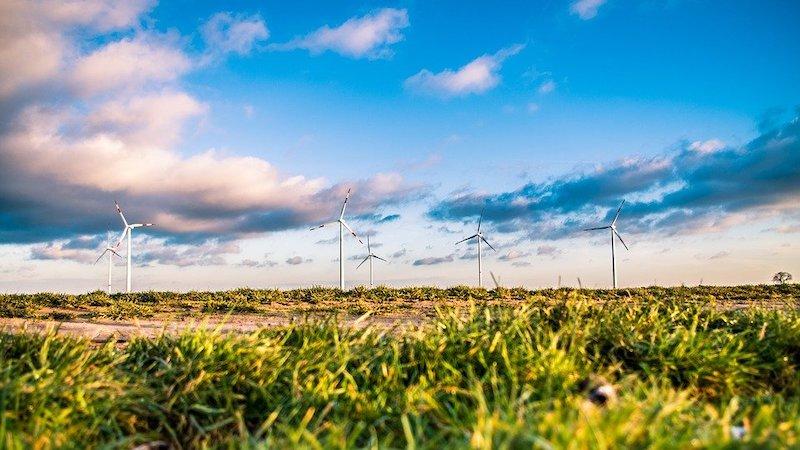 Warum Klimaschutz auch im Hosting-Bereich ein Thema ist