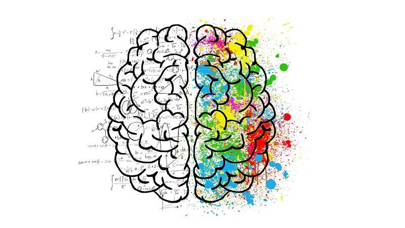 Gehirn, Brain, Geisteshaltung, Grundhaltung, Einstellung, kognitive Flexibilität, mentale Flexibilität
