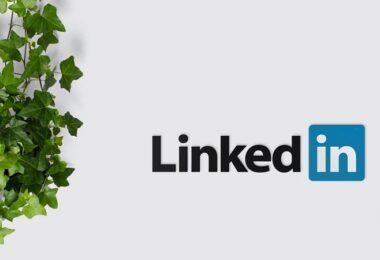 LinkedIn, lustige LinkedIn-Nachrichten, LinkedIn-Anfragen, LinkedIn-Spam