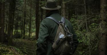 Wald, Frau, Natur, Wandern