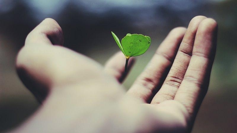 Mehr Hoffnung in der Krise: Diese 5 Methoden helfen dir