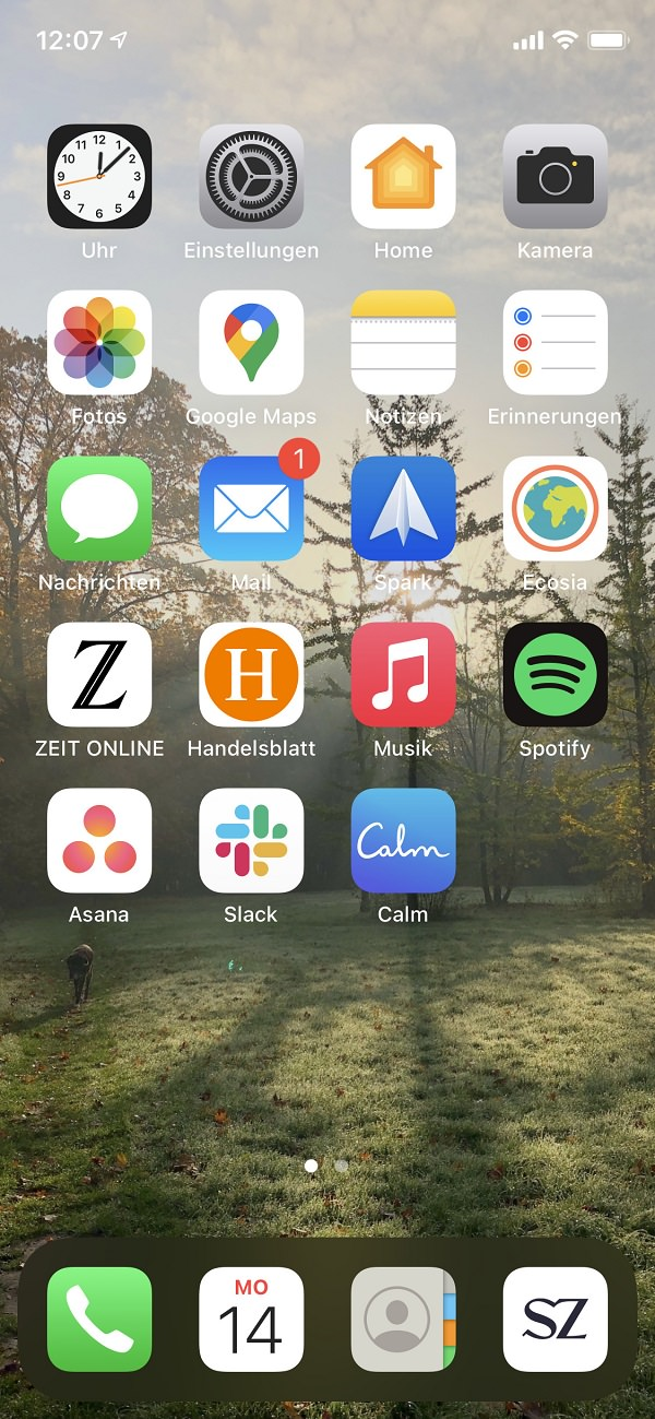 Homescreen, Apple, Apps, iPhone, Ronny Höher, Orfgen Marketing
