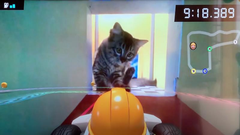Mario Kart Live: Wie das Spiel funktioniert und was es mit Katzen macht