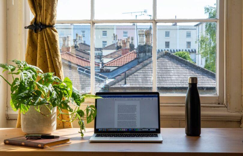 Home-Office, Computer, Pflanze, beste Arbeitsbedingungen