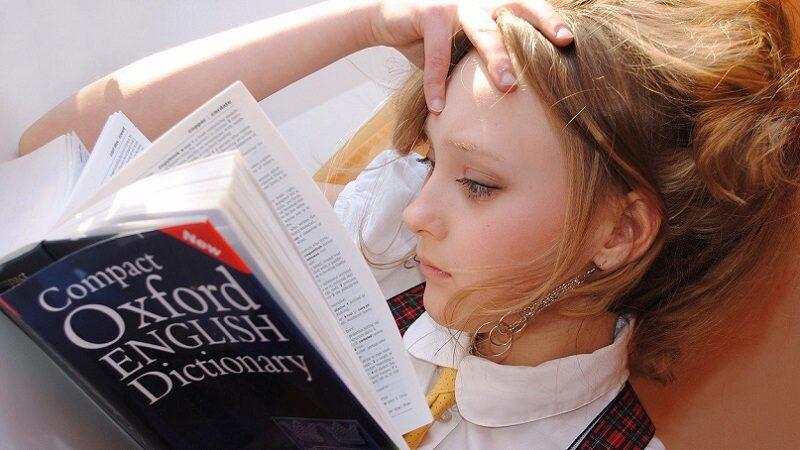 Wörterbuch, Dictionary, Fremdsprache, Fremdsprachen im Job