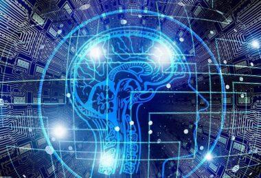 Daten, persönliche Daten, personenbezogene Daten, Gehirn