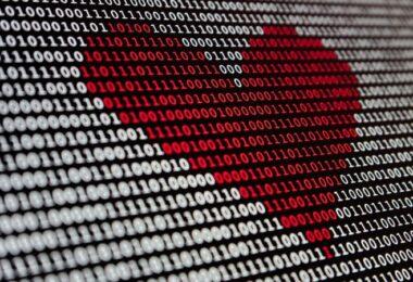 Daten, Datenschutz, Vertrauen in die Regierung