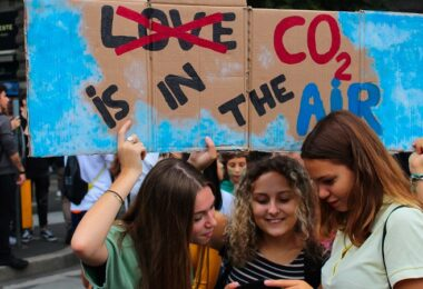 CO2, Plakat, Klimaproteste, Fridays for Future, Emissionen