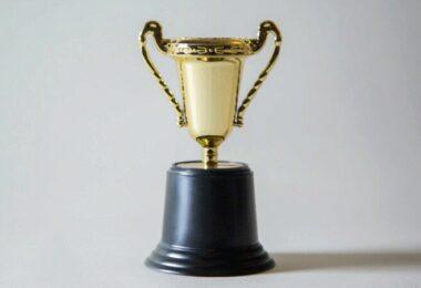 Gewinner, Win, Gewinn, Pokal, Trophäe